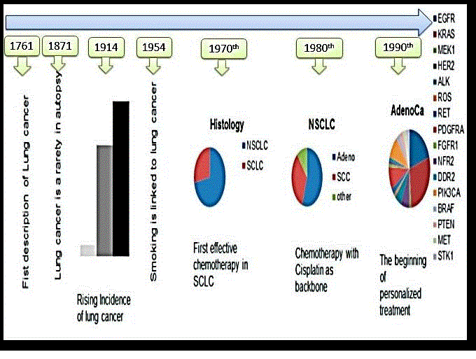 Figure 1. Story of lung cancer diagnosis